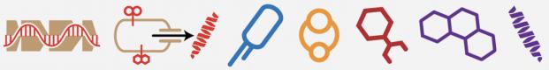 hmbr_logo-e1530132980532